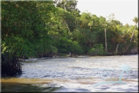 beachfront for a resort for sale in Belize