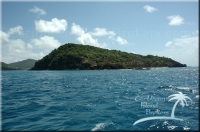 Petit Nevis for sale