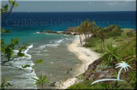 Perfect beach for sale