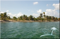 beachfront parcels on Turneffe's Grand Bogue Caye