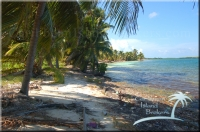 an unspoiled beach on Grand Bogue
