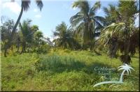 mainland Grand Bogue