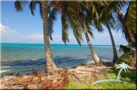 incredible view from Belize beachfront property