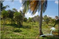 Caribbean land in Belize
