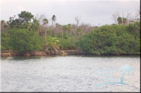 access from the western lagoon for the Turneffe property