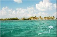 Turneffe Point Caye