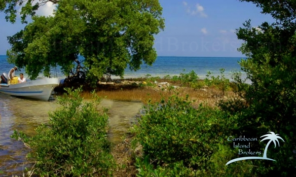 Looking east over the point of Cross Caye