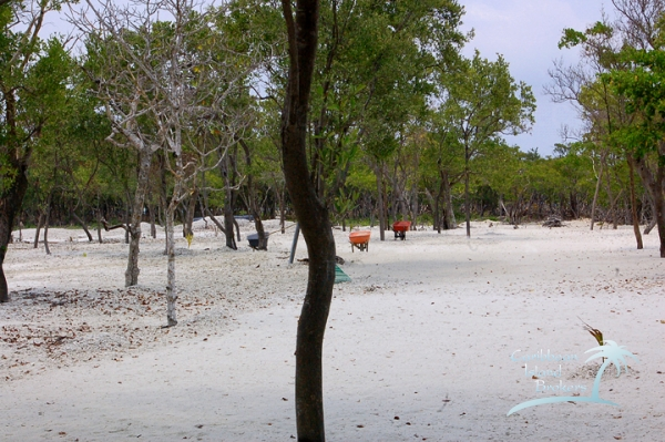 The filled and groomed area of Sunset Caye