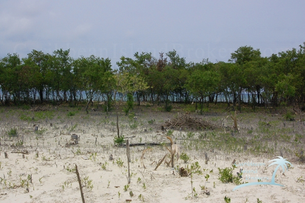 The cleared but unfilled area of Sunset Caye