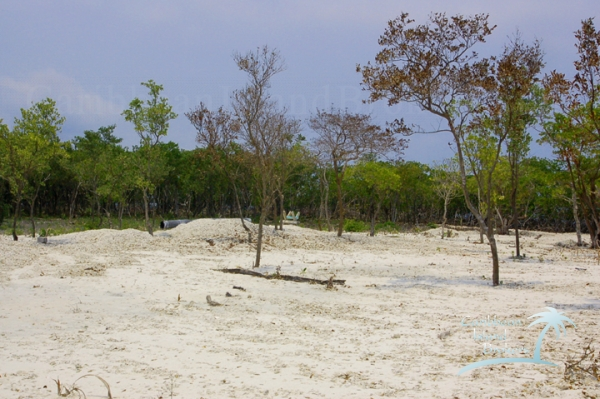 Some of the sand from filling is still piled on Sunset Caye and ready to be spread out.