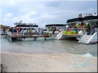 a busy boat dock