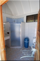 shower within the handicapped bathroom