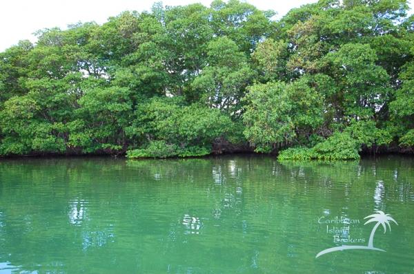 Horseshoe Caye, island for sale in Belize