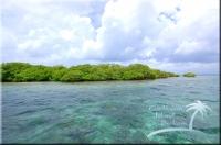 Secret Island for sale